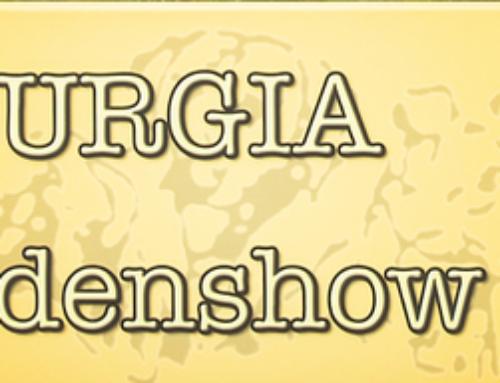 Limburgia Hondenshow – CACIB Echt